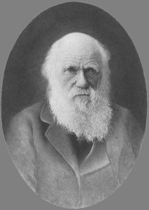 Charles Darwin. Developed theory of evolution against a backdrop of disbelief and scepticism. Collected evidence over 20 years.